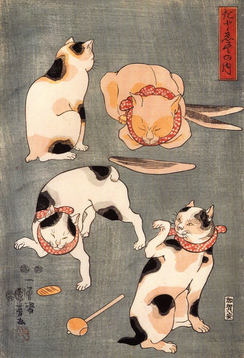 Utagawa Kuniyoshi, Cuatro gatos en diferentes poses, Periodo Edo.  Imagen vía Wikimedia Commons.