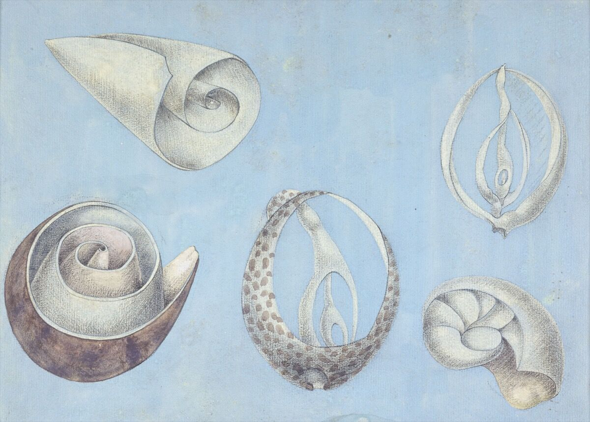 Ithell Colquhoun, Untitled . © Tate.  Courtesy of the Tate.