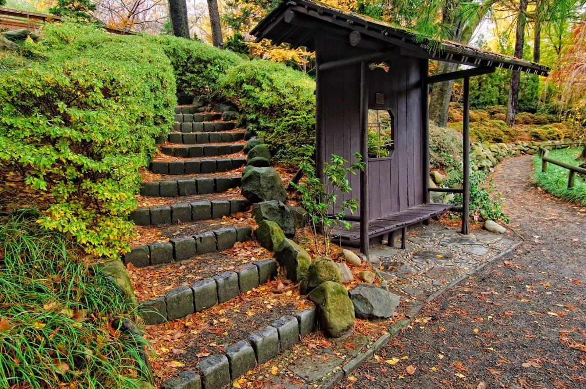 Japanese Hill-and-Pond Garden. Photo by Antonio M. Rosario. © Brooklyn Botanic Garden. Courtesy of Brooklyn Botanic Garden.