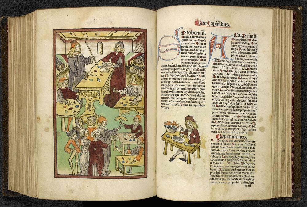 Jacob Meydenbach, [H]ortus Sanitatis, 1491 © British Library Board. Courtesy of New York Historical Society Museum & Library.