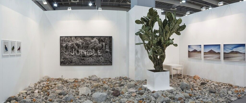 Installation image of theDITTRICH & SCHLECHTRIEM and Alexander Levybooth at Zona MACO courtesy of the galleries.