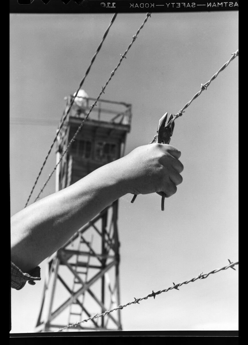 Toyo Miyatake, Hand and Barbed Wire, ca. 1944. Courtesy Toyo Miyatake Studio.