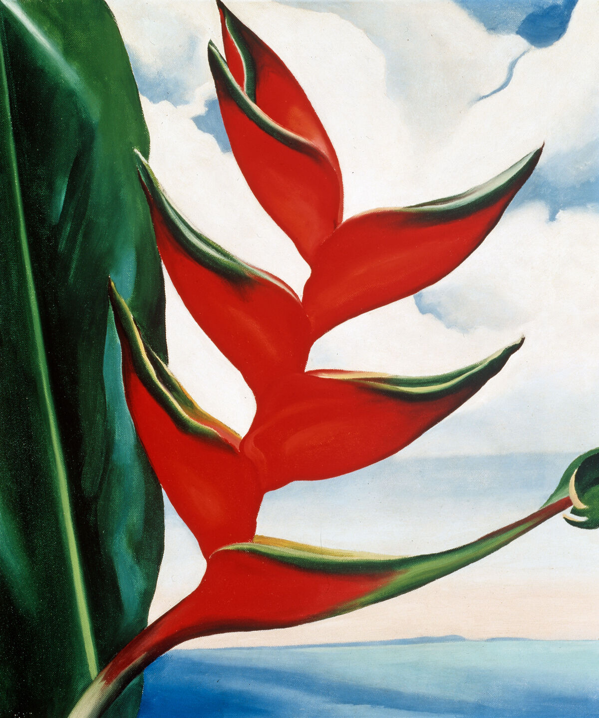 Georgia O'Keeffe, Heliconia, Crab's Claw Ginger, 1939. © 2018 Georgia O'Keeffe Museum / Artists Rights Society (ARS), New York. Courtesy of the New York Botanical Garden.