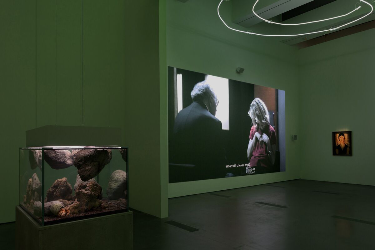 Installation photo, Pierre Huyghe at LACMA (11/23/14 - 2/2/15). © Pierre Huyghe. Photo © Museum Associates/LACMA