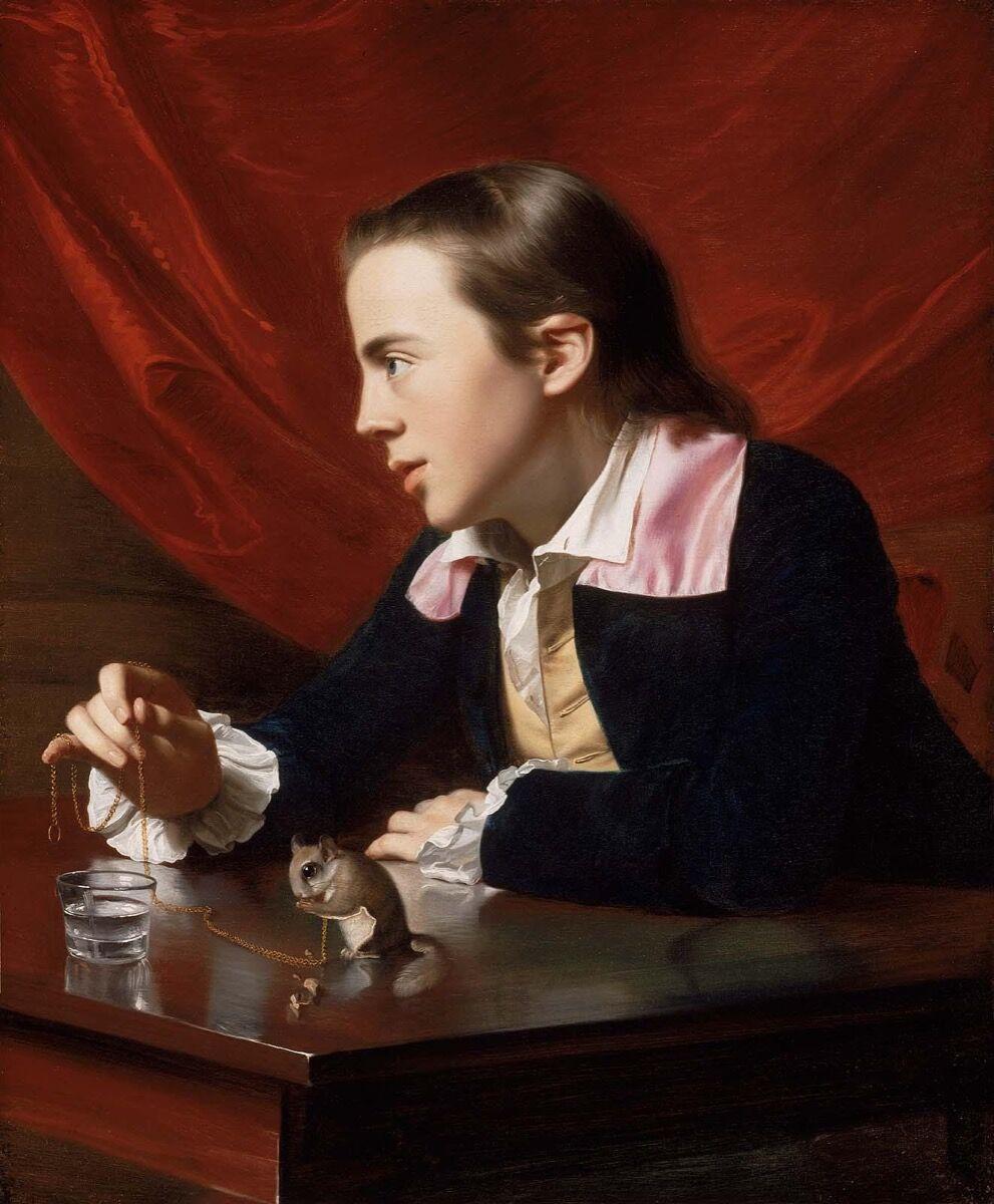 John Singleton Copley, A Boy with a Flying Squirrel (Henry Pelham), 1765. Courtesy of the Museum of Fine Arts Boston.