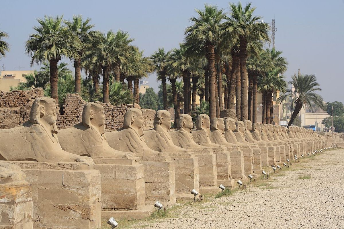 A row of sphinx sculptures lining a road that leads to the Temple of Luxor. Photo by Kora27, via Wikimedia Commons.