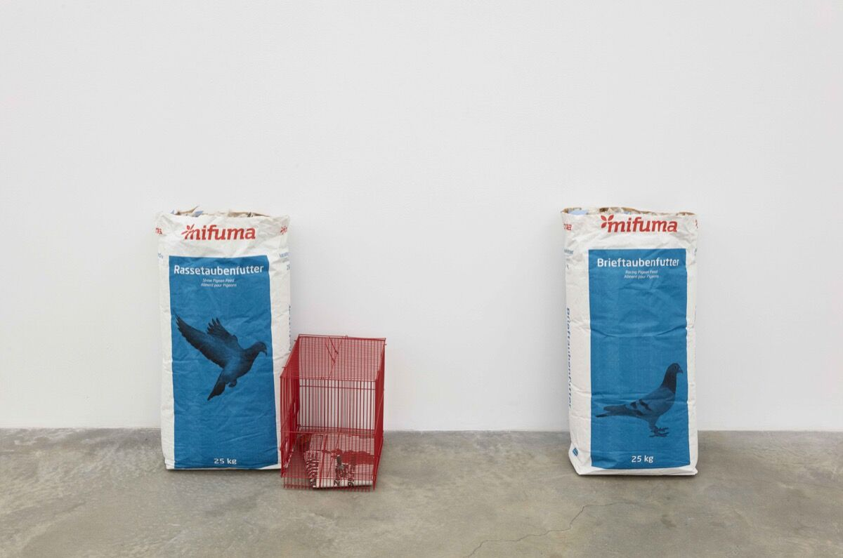 """Installation view of Jason Dodge, """"Hand in Hand with the Handless"""" at Casey Kaplan Gallery, New York, 2018. Courtesy of Casey Kaplan Gallery."""