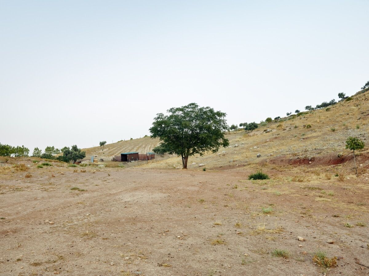 This area had open wells and a shooting range during the years of repression. There may be as many as 400 victims at the bottom of these wells, among them the poet and playwright Federico García Lorca. Miquel Gonzalez, Víznar IV (Llanos de Corbera), Granada, 2016. Photo © Miquel Gonzalez. Courtesy of the artist.