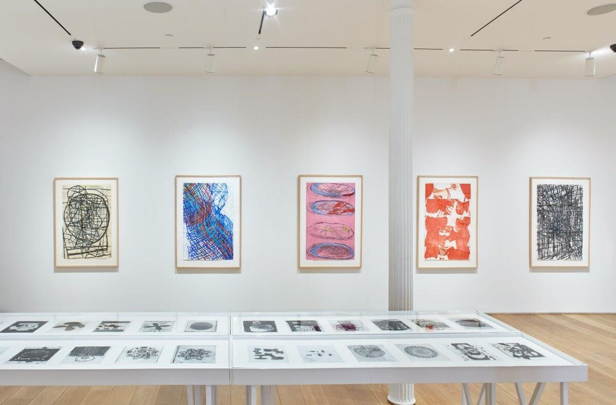 """Installation view of """"Terry Winters: Facts and Fictions"""" at The Drawing Center, 2018. Photo by Martin Parsekian. Courtesy of The Drawing Center."""