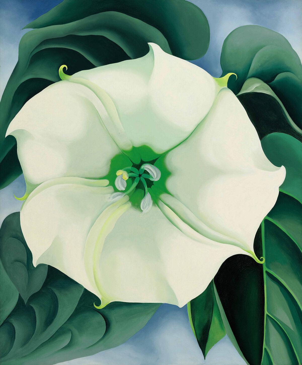 Georgia O'Keeffe, Jimson Weed / White Flower No. 1, 1932. Foto de Edward C. Robison III.  Cortesía del Museo de Arte Americano Crystal Bridges, Bentonville, Arkansas.