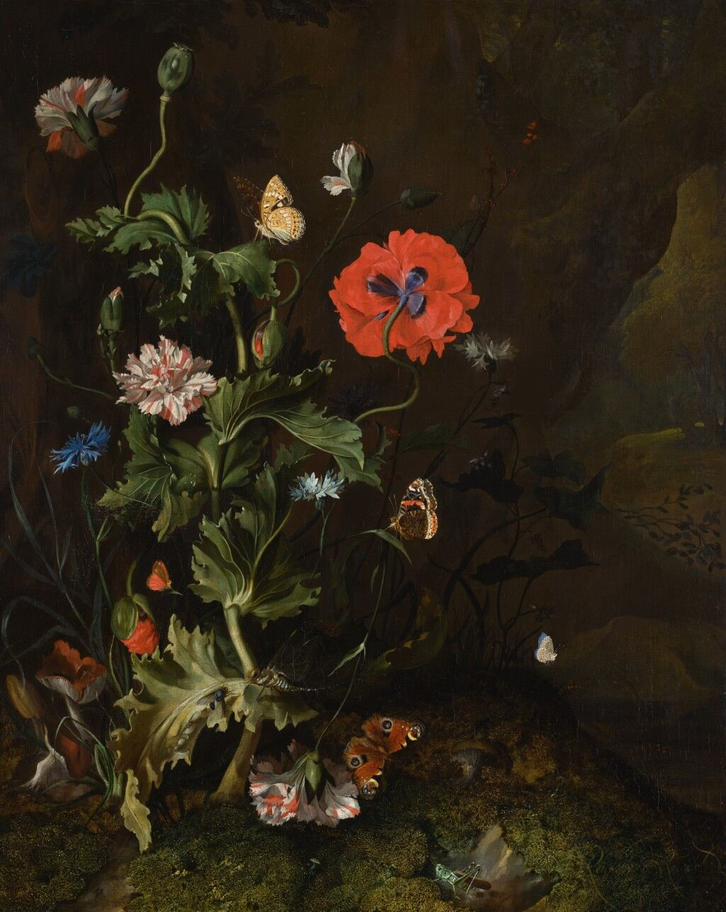 Rachel Ruysch, Still life of a thistle between carnations and cornflowers on a mossy forest floor, with butterflies and a cricket, 1683. Image via Wikimedia Commons.