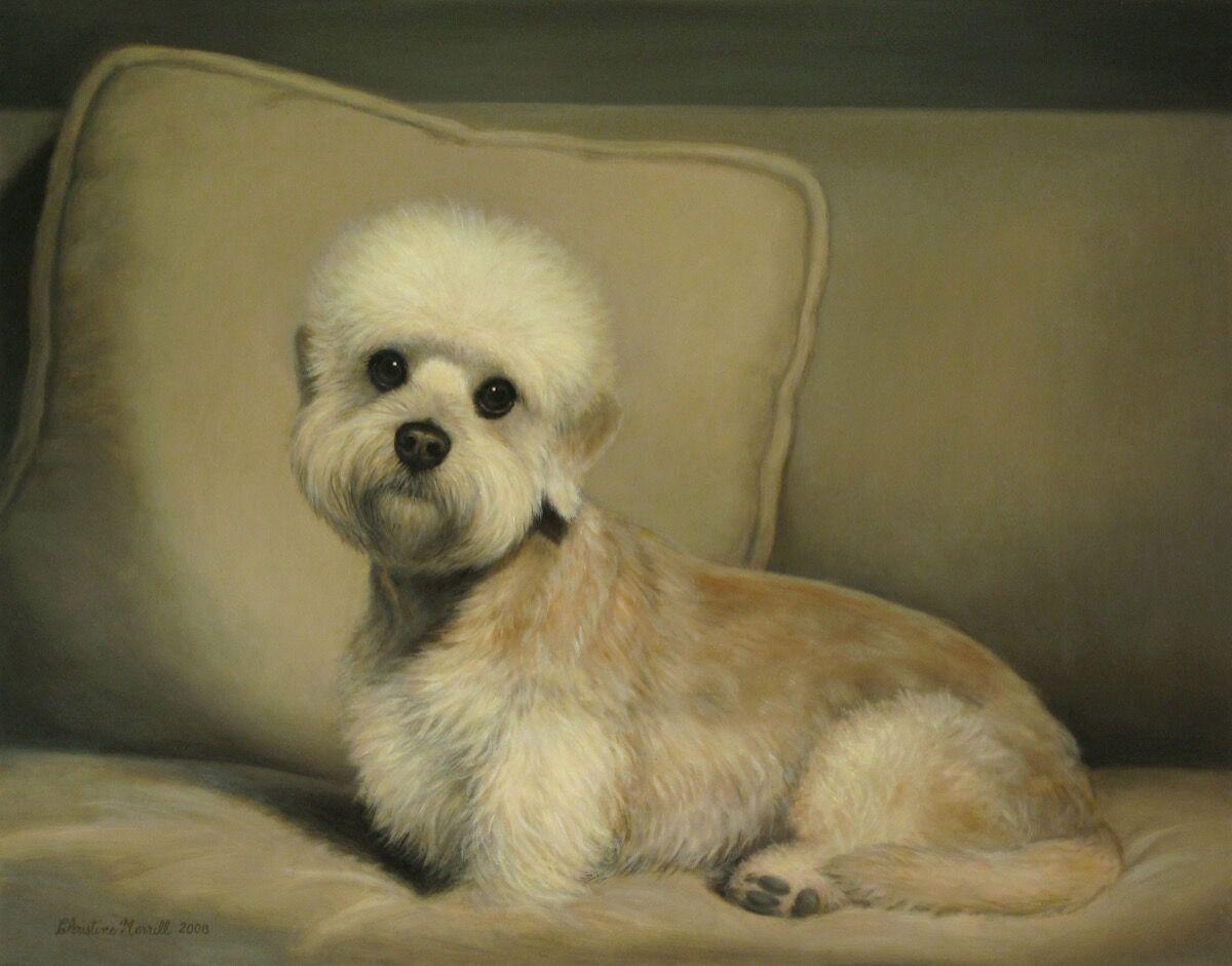 Christine Merrill,Rocky, 2008. Courtesy of William Secord Gallery.