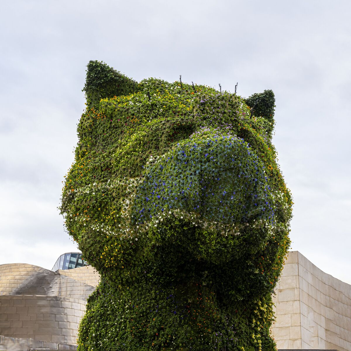 Jeff Koons, Puppy (1992) donning a new face mask. Courtesy Guggenheim Bilbao.