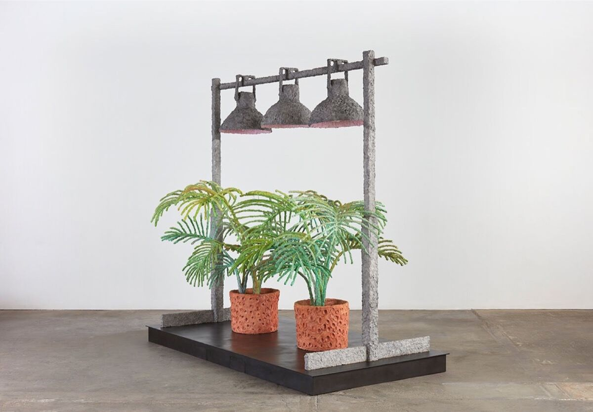 Evan Holloway, Two Ferns, 2017. Courtesy of Paula Cooper Gallery, New York.