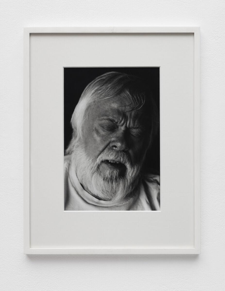 Aura Rosenberg, Head Shots (JB), 1991-1996. Courtesy of Martos Gallery.