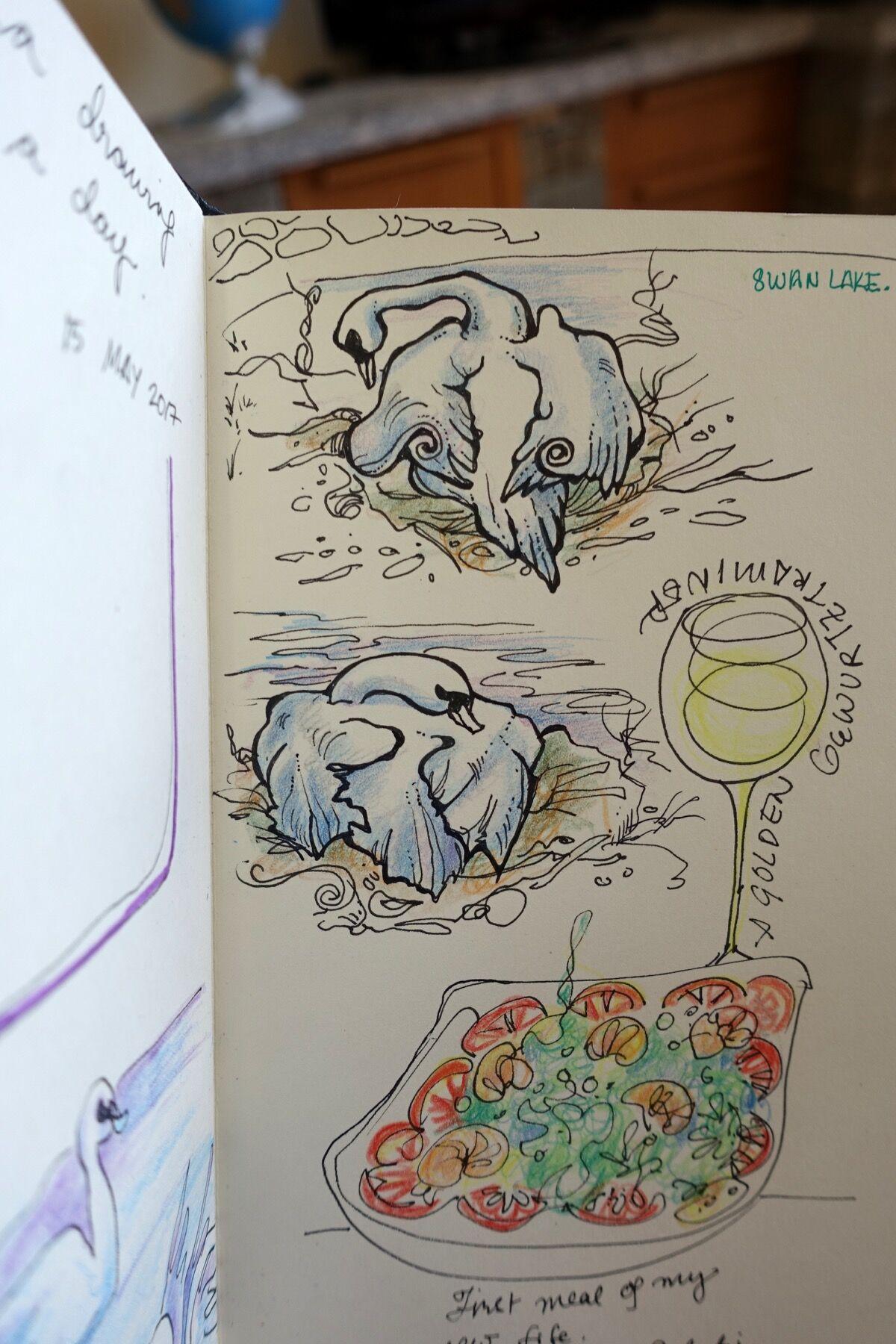 Pian di Spagna Swans. Sketch by Nikki Martinez. Courtesy of the artist.