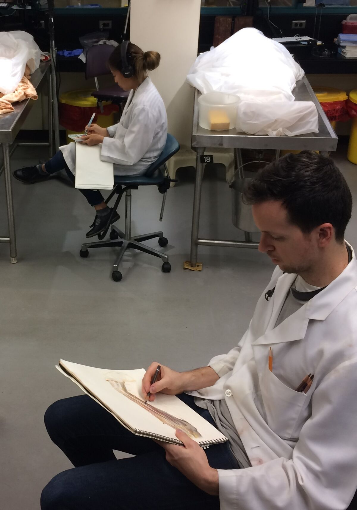 The Renaissance Tradition of Using Cadavers in Drawing