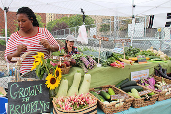 Marcus Garvey Apartments (MGA) Brownsville Farmstand.  Courtesy of Project EATS.