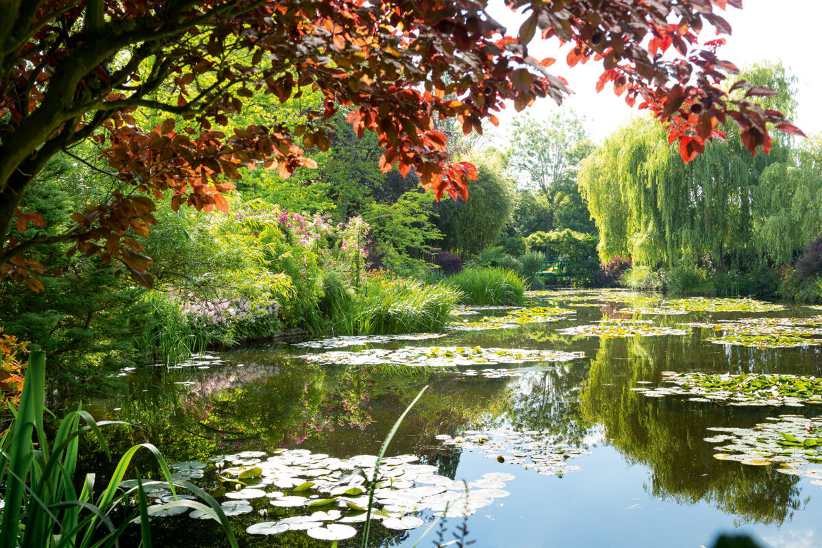 View of Monet's water garden, Giverny, France. Photo © Eric Sander.