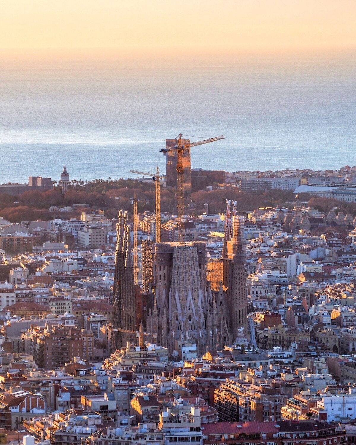A view of the Sagrada Família in Barcelona. Photo by Alex Reiss on Unsplash.
