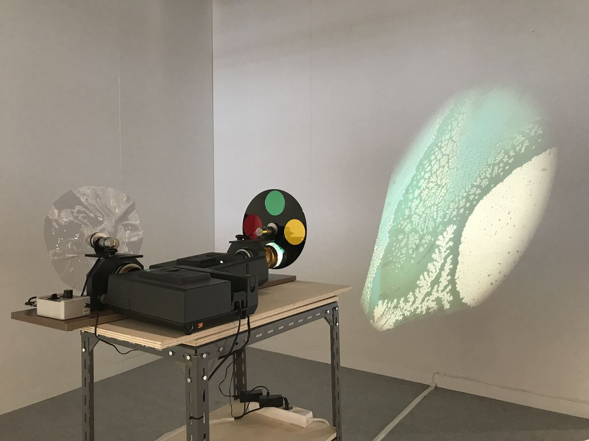 Installation view of Galería Max Estrella's booth at The Armory Show, New York, 2019. Courtesy of Galería Max Estrella.