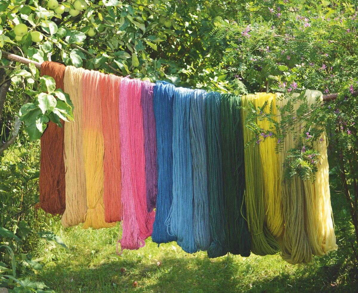 Detail of a photo from Franziska Ebner and Romana Hasenöhrl, Natural Dyeing with Plants: Glorious Colors from Roots, Leaves, and Flowers, 2018. Courtesy of Schiffer Publishing.
