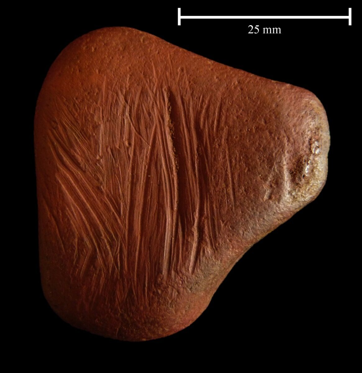 The surface may have been scratched to produce red powder. Courtesy of Paul Shields, University of York.