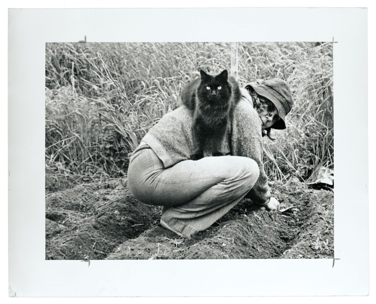 Anne Arnold and Christy. Image from  Artful Cats  by Mary Savig, published by the Smithsonian's Archives of American Art, 2019.