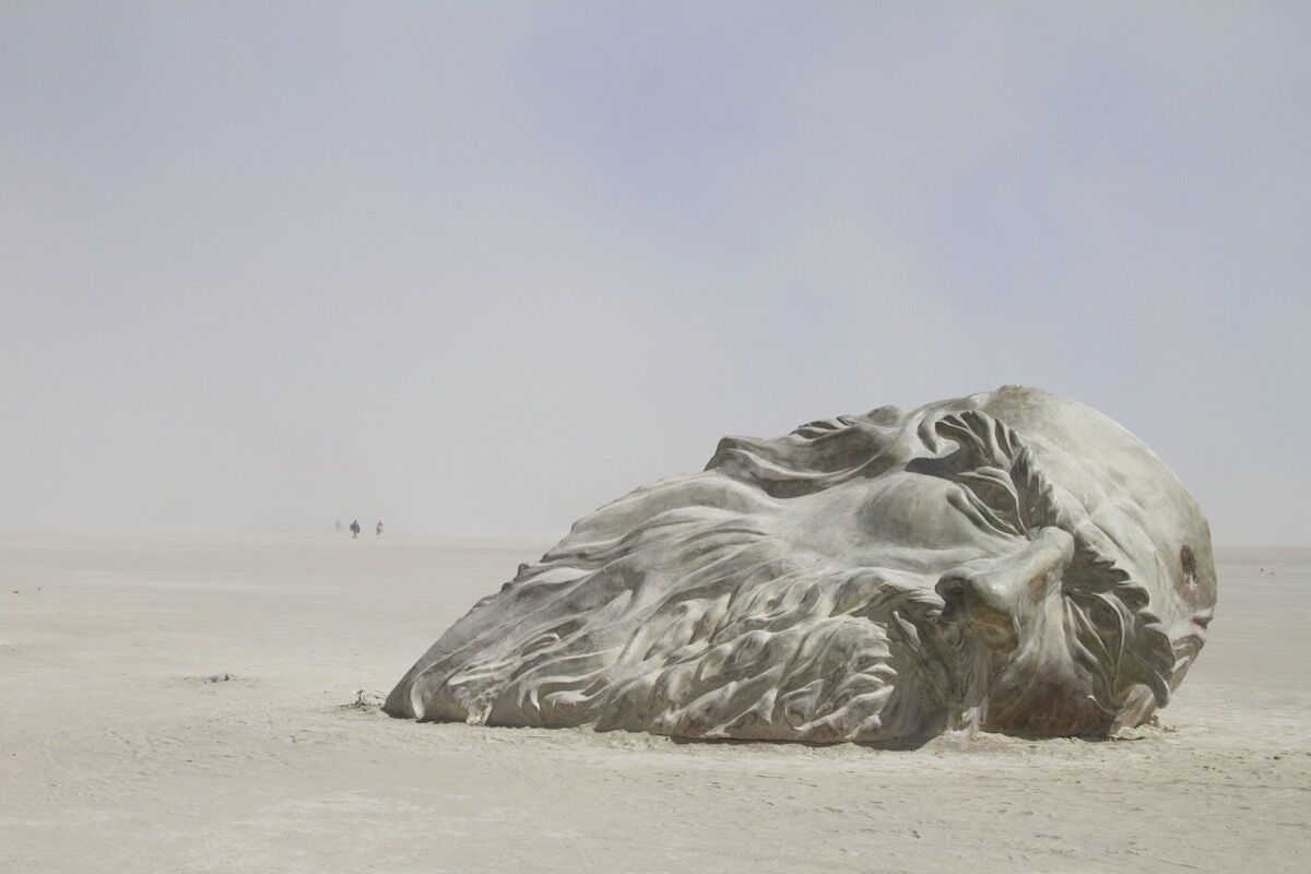 Inside the Mind of da Vinci (2016), a collaboration between Mischell Riley and Colin O'Bryan, saw a massive, acid-stained concrete model of Leonardo da Vinci's head emerge from the dust. Its hollowed-out interior—which visitors could climb inside—was filled with the artist's sketches and writings.