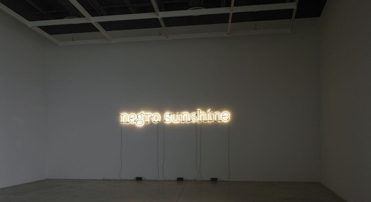 Glenn Ligon, Warm Broad Glow, 2005. Photo by Rick Gardner. © Glenn Ligon. Courtesy of the artist, Hauser and Wirth, New York, Regen Projects, Los Angeles, Thomas Dane Gallery, London, and Chantal Crousel, Paris.