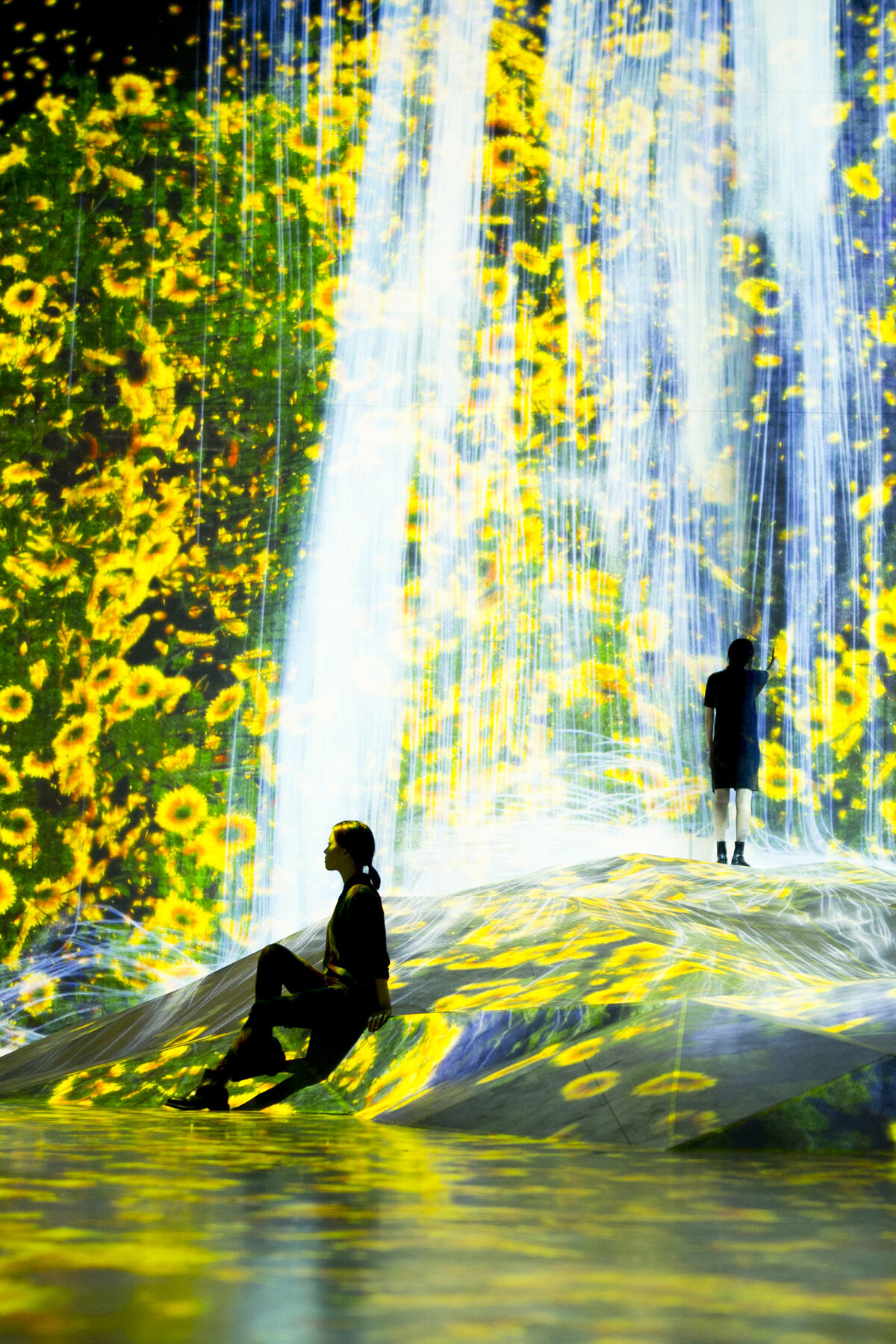 "Installation view of ""teamLab Borderless"" at the MORI Building Digital Art Museum, Odaiba, Tokyo, 2018. © teamLab."