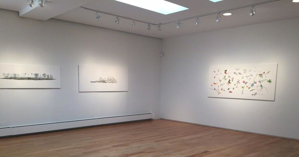 """Installation view of """"Limit,"""" courtesy of Praxis"""