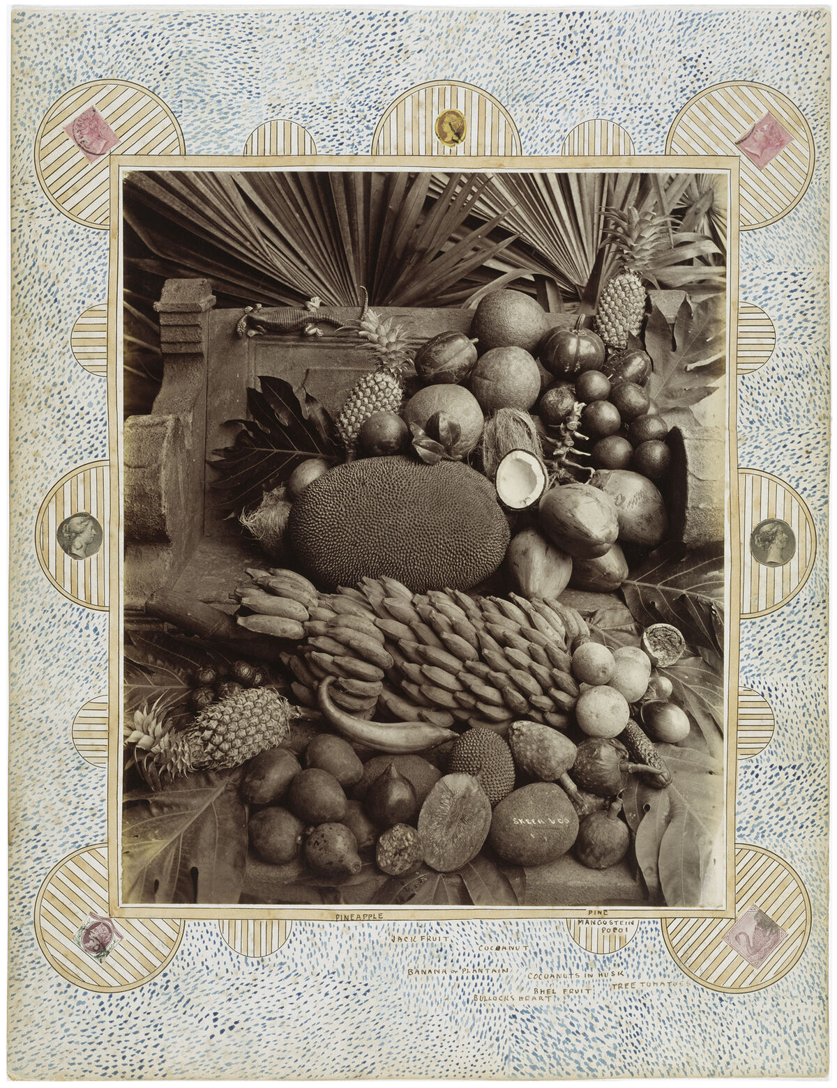 William Louis Henry Skeen, Still Life of Exotic Fruits and Lizard from Ceylon, Colombo, Sri  Lanka, ca. 1880. Image from Feast for the Eyes (Aperture, 2017). Courtesy of Victoria and Albert Museum, London.