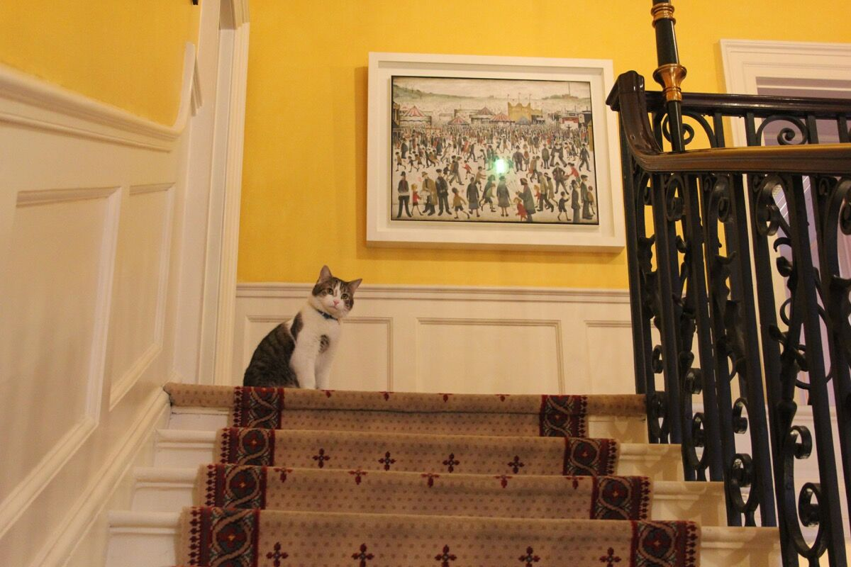 Downing Street's cat, Larry on the staircase with L.S Lowry, Lancashire Fair: Good Friday, Daisy Nook, 1946. Photo by Number 10, via Flickr.
