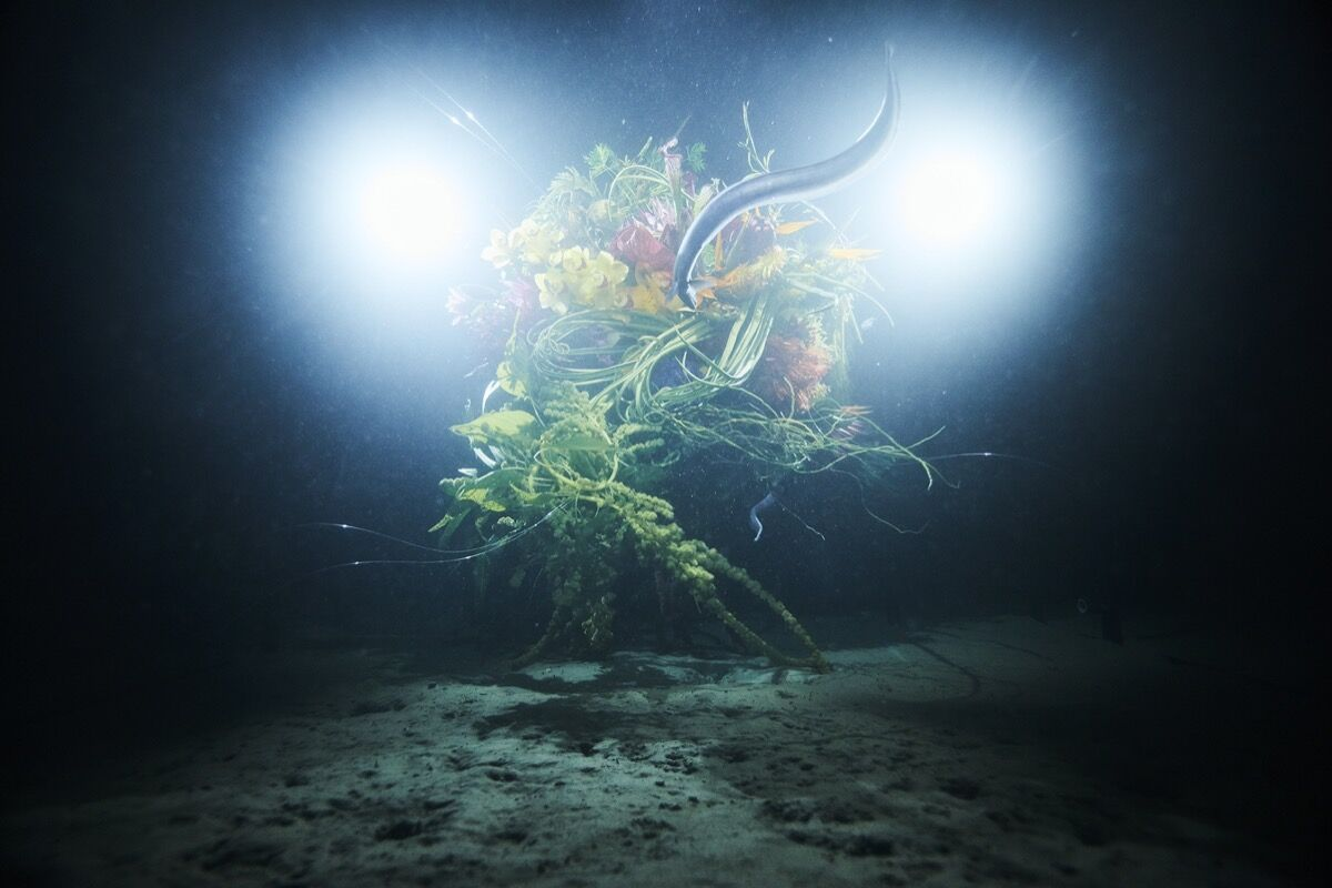 Azuma Makoto, In Bloom #3: SEPHIROTHIC FLOWER: Diving into the Unknown, in Suruga Bay, 2017. Photo by Shiinoki Shunsuke. Courtesy of the artist and AMKK.
