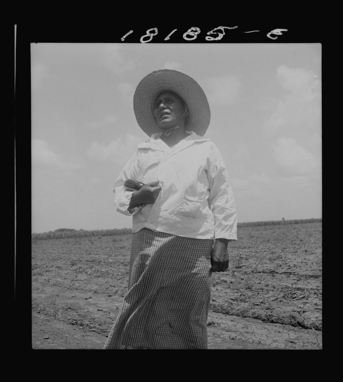 Dorothea Lange, Wife of a Mexican sharecropper near Bryan, Texas, 1938. Courtesy of the Library of Congress.