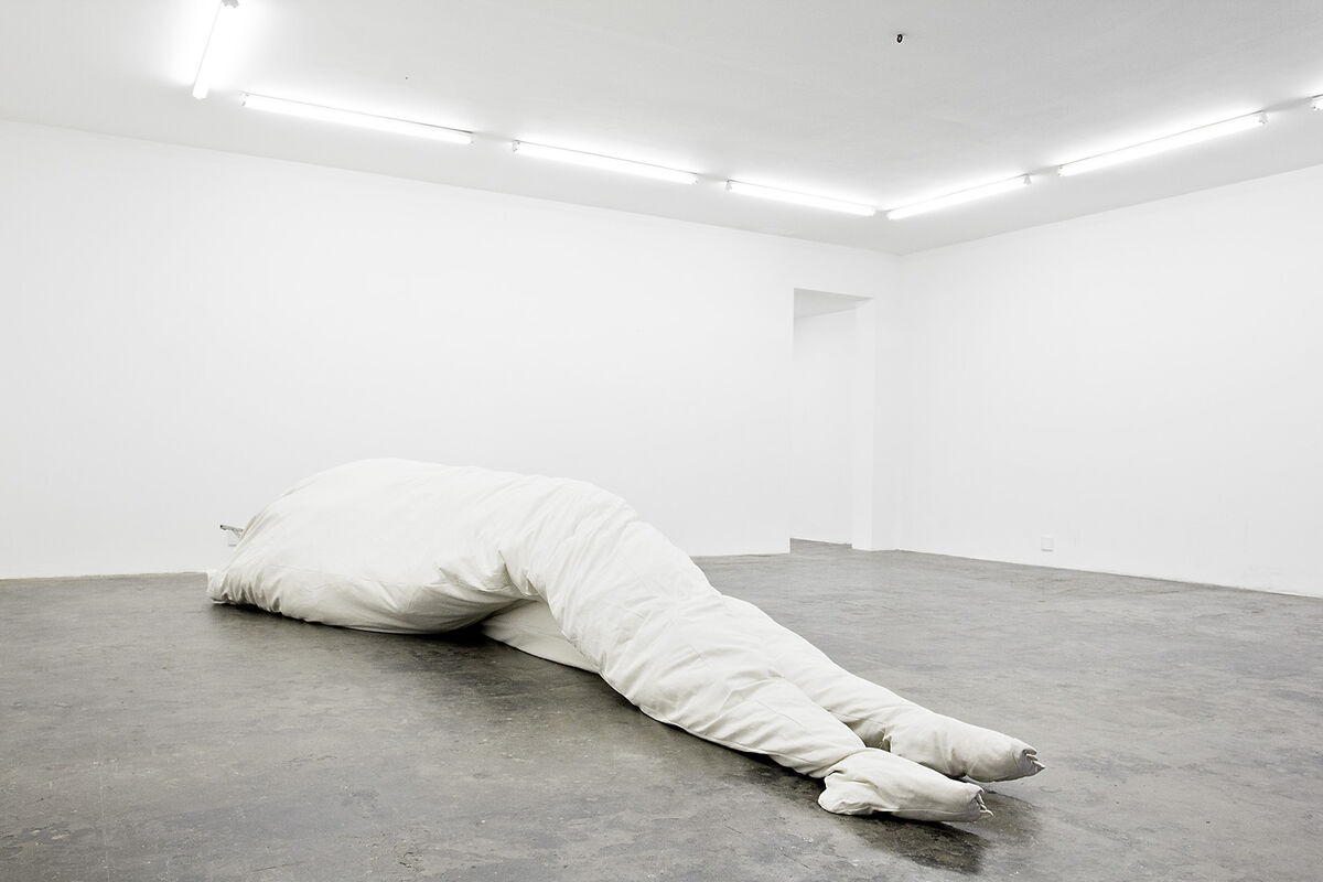 Jared Ginsburg, Legs, 2013, courtesy ofblank projects.