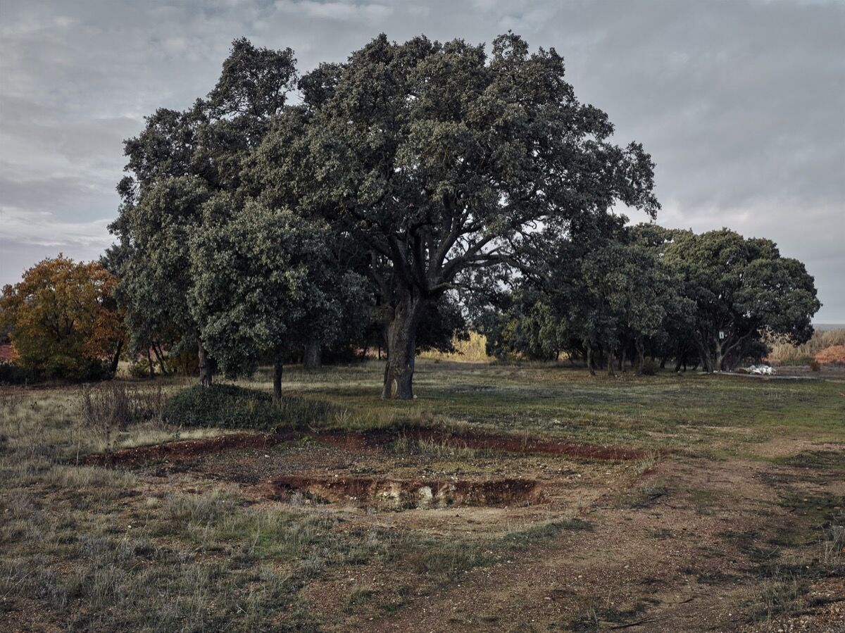 More than 300 people were shot here between August and October 1936. This grave contained 26 bodies in three layers. A total of 96 bodies were exhumed from four such graves between July 2014 and April 2015. There may well be other graves but many human remains have been buried by railways and highways. Miquel Gonzalez, Monte de Estépar II, Burgos, 2016. Photo © Miquel Gonzalez. Courtesy of the artist.