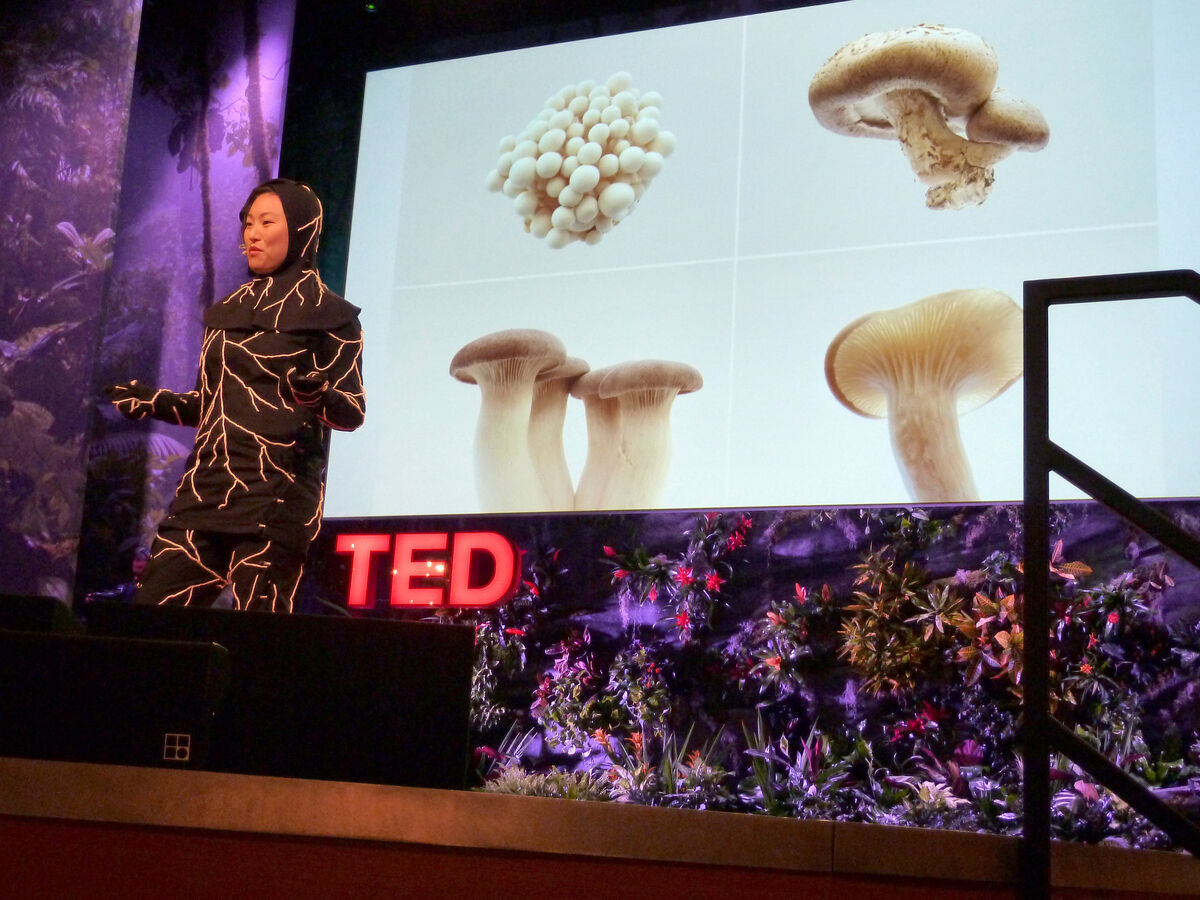 Jae Rhim Lee's TED Talk on the Inifinity Burial Suit. Courtesy of Coeio.