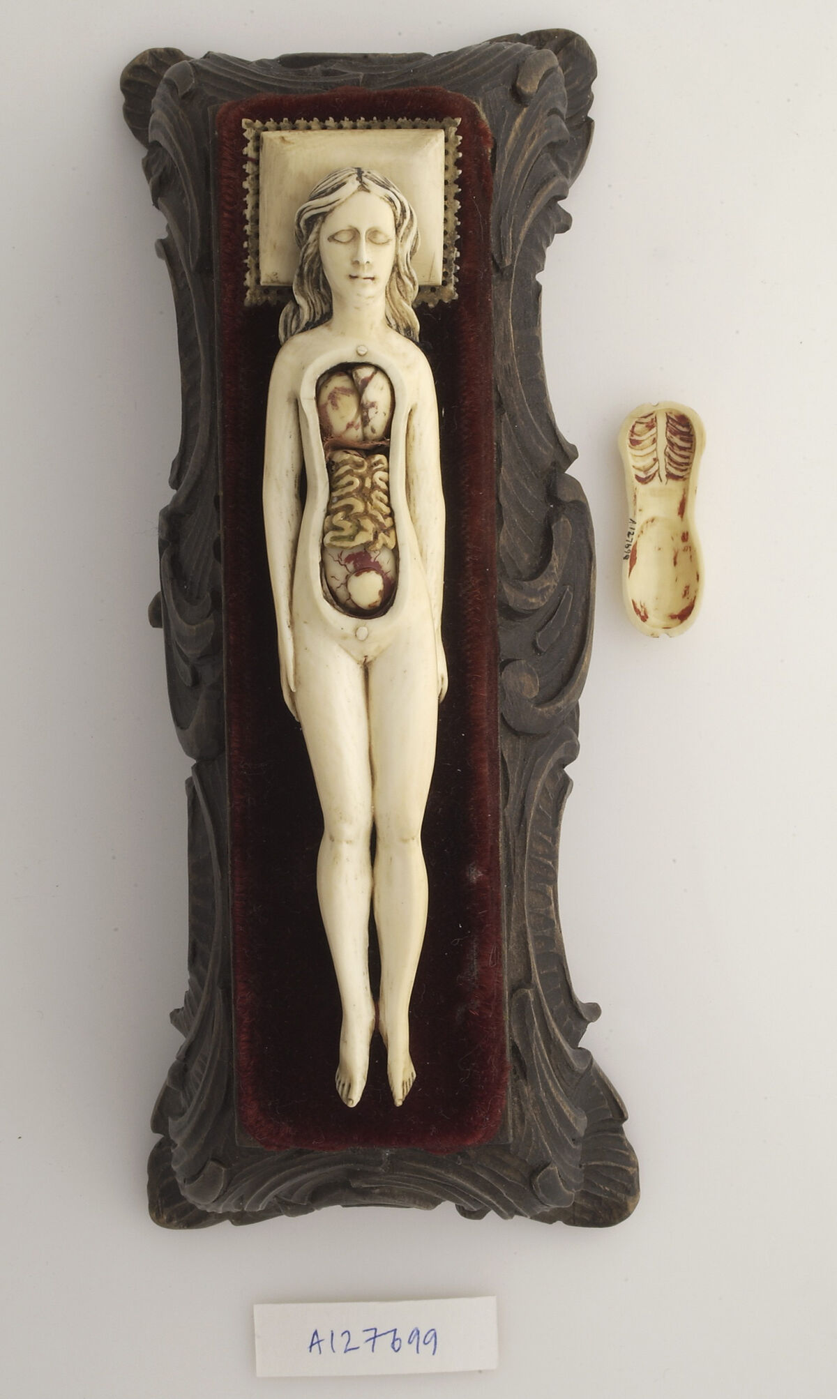 Ivory anatomical model of a pregnant female with removable parts possibly used by obstetric specialists or midwives to provide reassurance for pregnant women, 17th century. Courtesy of the Wellcome Library, London.