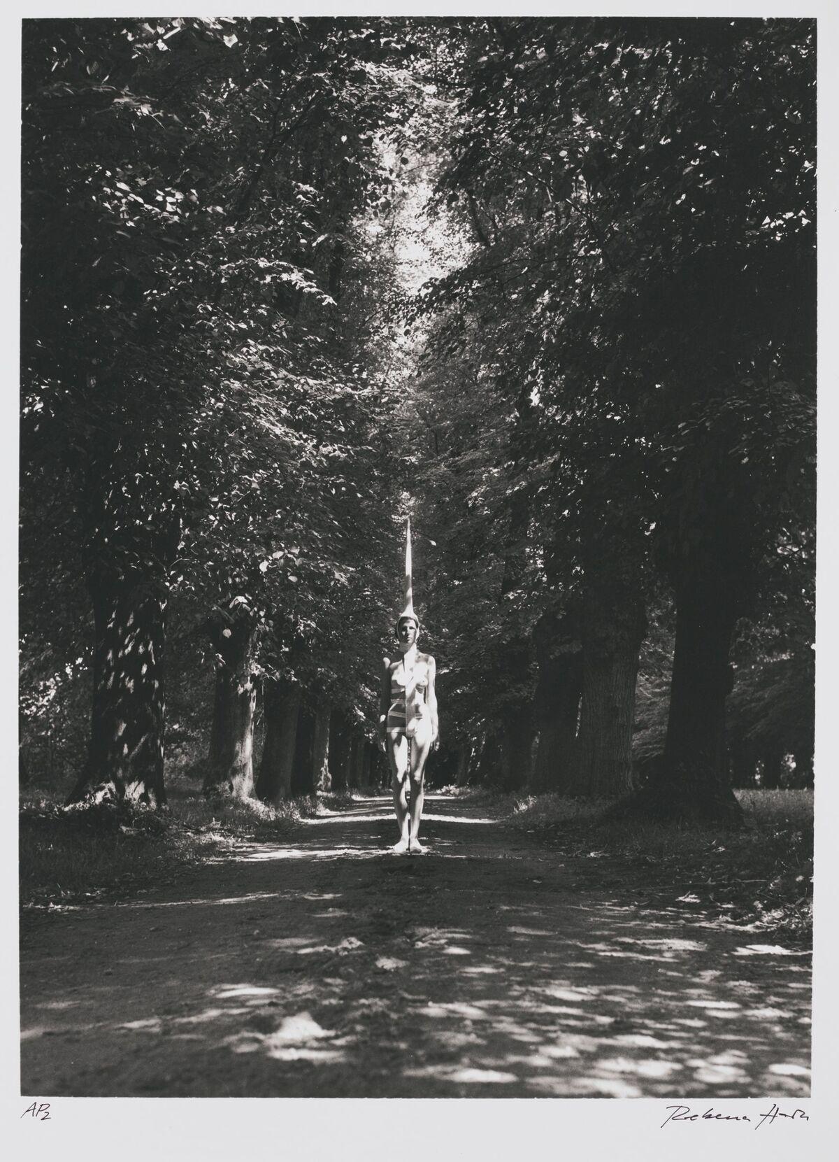 Rebecca Horn, Unicorn, 1970-2. © Rebecca Horn / Artists Rights Society (ARS), NY / VG Bild-Kunst, Bonn. Courtesy of Harvard Art Museums/Busch-Reisinger Museum, gift of the artist.