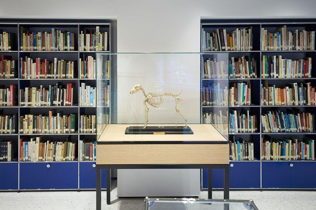 Foto del Museo del Perro de Nueva York, cortesía del museo.