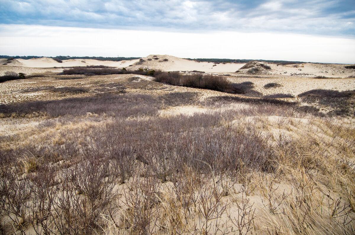Cape Cod National Seashore, 2014. Photo via Flickr.
