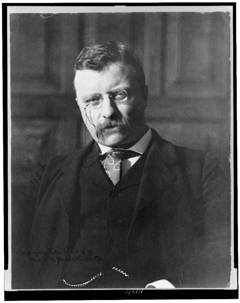 Zaida Ben-Yusuf, Portrait of Theodore Roosevelt as Governor, c. 1899. Photo via the Library of Congress.