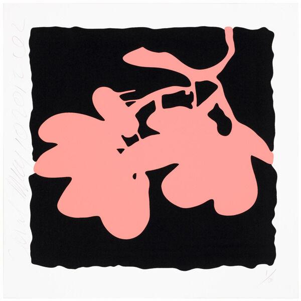 Lantern flowers - Coral