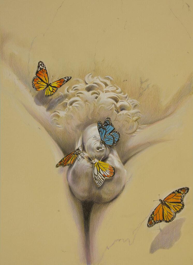 Pollinators #2
