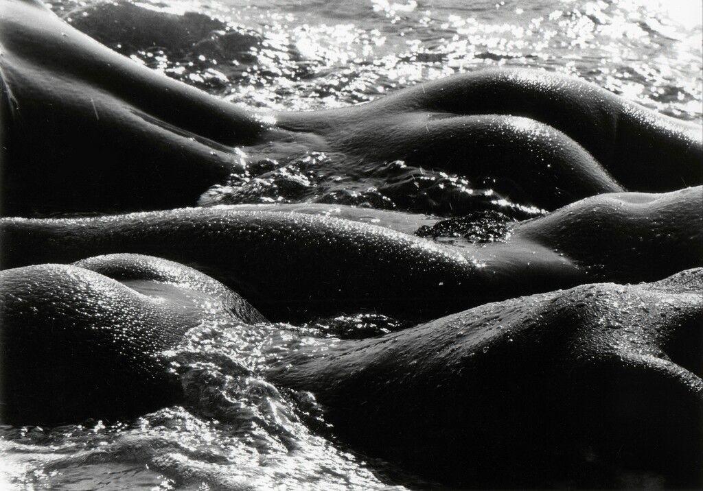 Geantes de la mer, Camargue