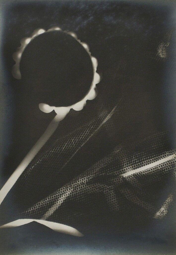 Untitled (Rayograph)