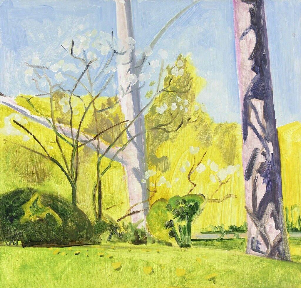 Tree Trunks and Dogwood