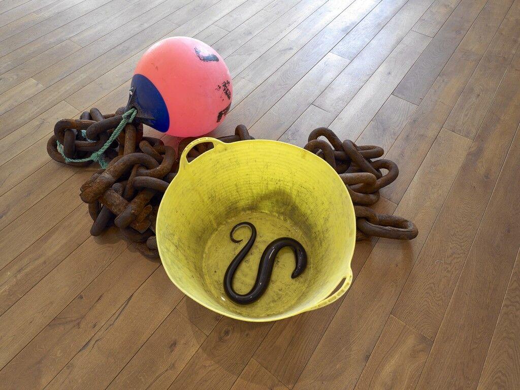Untitled (Chain, Rope, Bucket, Buoy, Eels)